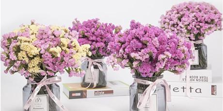 【千千生鲜丨送给心爱的她~】勿忘我▪鲜花▪女神花,全国包邮,仅19.9元=约2斤(2束任意4色混搭)有些花一听名字,就赢走很多人的心,让她们感受到你满满的爱~